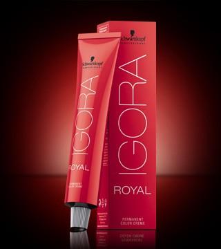 igora royal schwarzkopf tinte