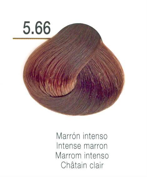 TINTE EN CREMA RISFORT COLOR MARRON INTENSO